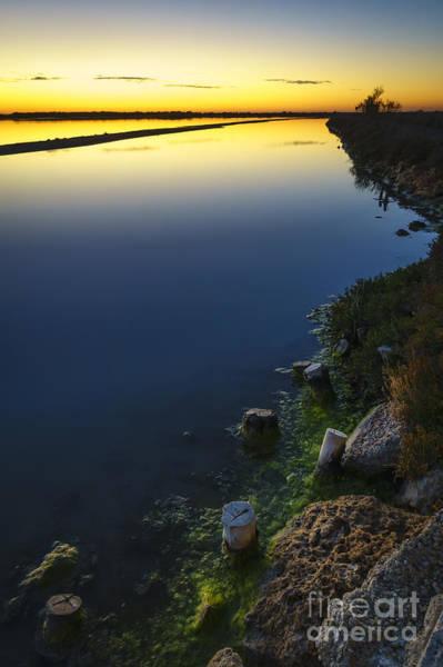Photograph - Arillo River Bird Observatory San Fernando Cadiz Spain by Pablo Avanzini