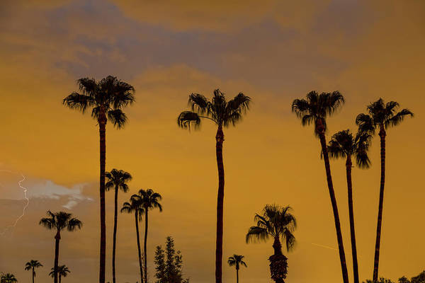 Photograph - Arizona August Evening Monsoons by James BO Insogna