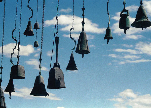 Photograph - Arizona Bells by Kenneth Campbell