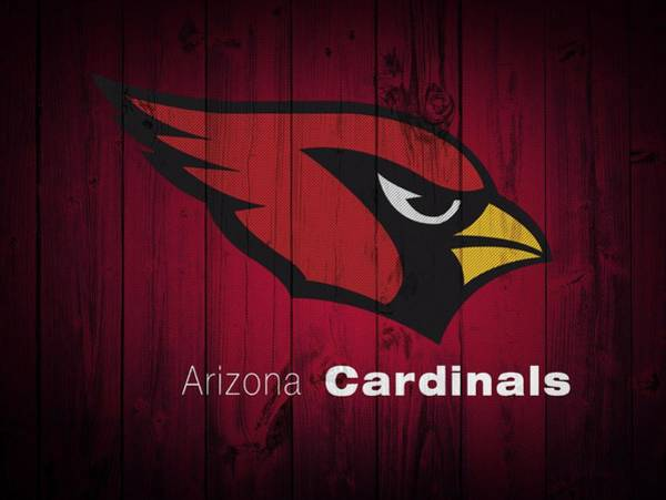 Cardinal Mixed Media - Arizona Cardinals Barn Door by Dan Sproul
