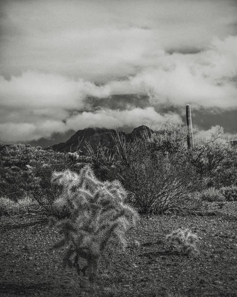 Wall Art - Photograph - Arizona Desert B-w by Joseph Smith