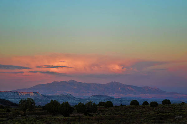 Photograph - Arizona Landscape At Sunset by David Gordon