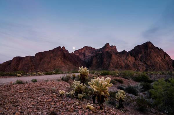 Photograph - Arizona Moonrise by Margaret Pitcher