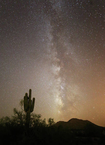 Photograph - Arizona Night by Jean Clark