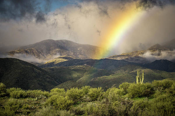 Photograph - Arizona Rainbow by Whit Richardson