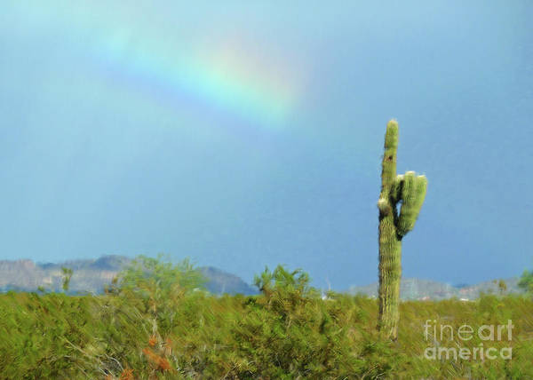 Sunday Afternoon Wall Art - Photograph - Arizona Sunday Afternoon by Methune Hively