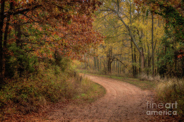 Photograph - Arkansas Backroads by Larry McMahon