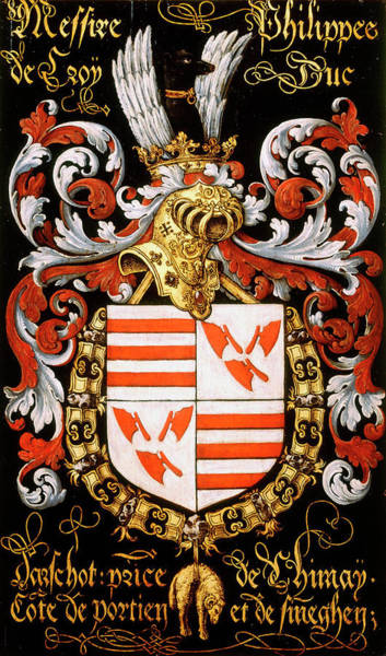 Pendant Painting - Armorial Plates From The Order Of The Golden Fleece - 16 by Lukas de Heere