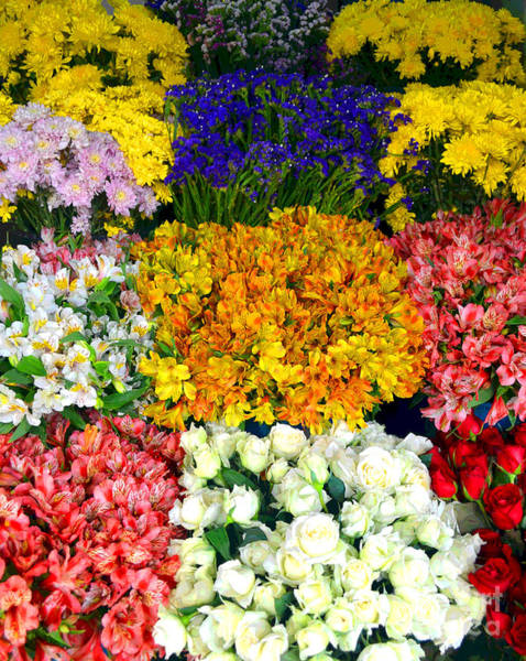 Photograph - Array Of Flowers For You by Christopher Shellhammer