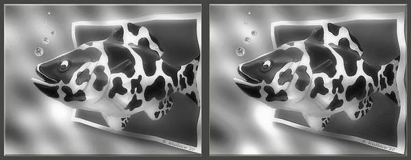 Stereogram Photograph - Art Fish - Gently Cross Your Eyes And Focus On The Middle Image That Appears by Brian Wallace