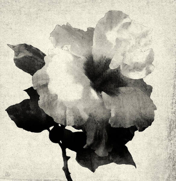 Simple Life Mixed Media - Art Is The Hibiscus -black And White by Stacey Chiew