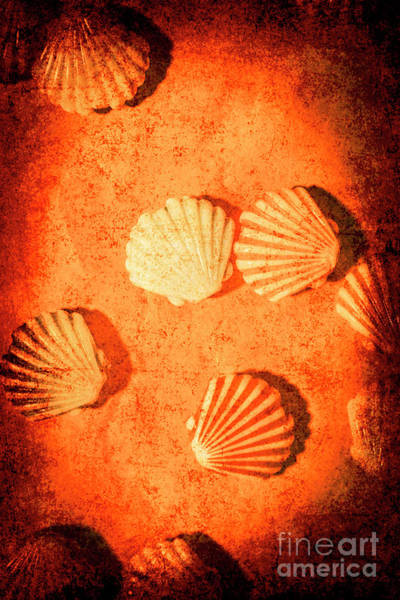 Scratch Photograph - Art Of Lost Oceans by Jorgo Photography - Wall Art Gallery