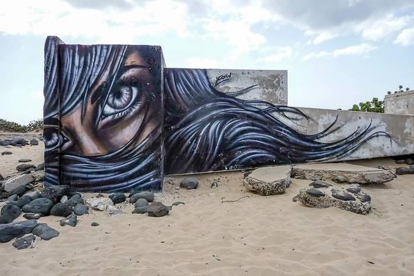 Ohau Wall Art - Photograph - Art Or Graffiti by NaturesPix