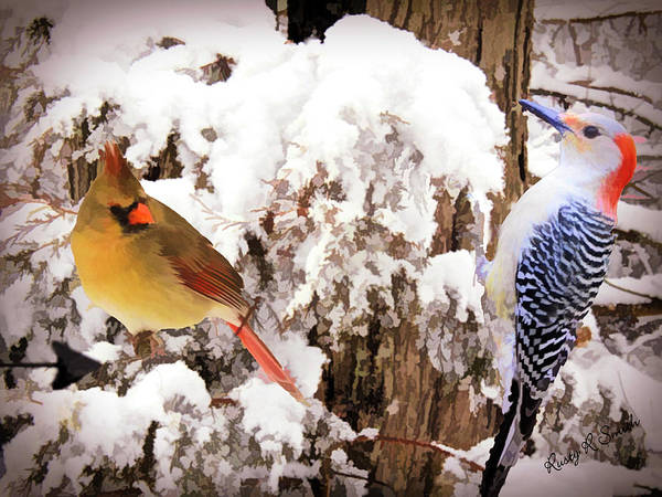 Digital Art - Art Photo Of Female Cardinal And Red Belied Woodpecker by Rusty R Smith