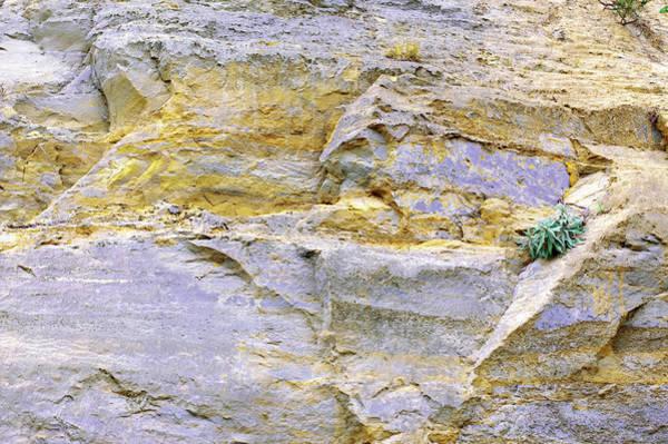 Photograph - Art Print Cliff 7 by Harry Gruenert