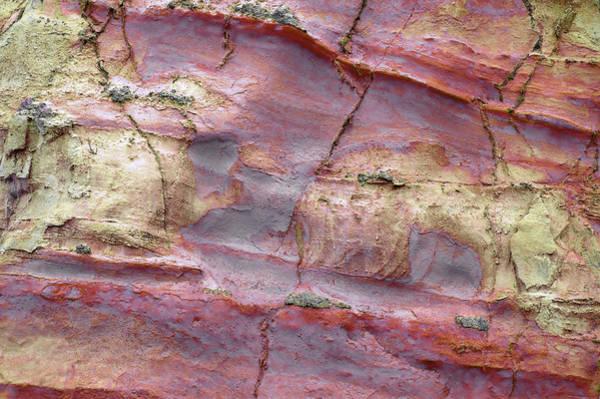 Photograph - Art Print Cliff 9 by Harry Gruenert