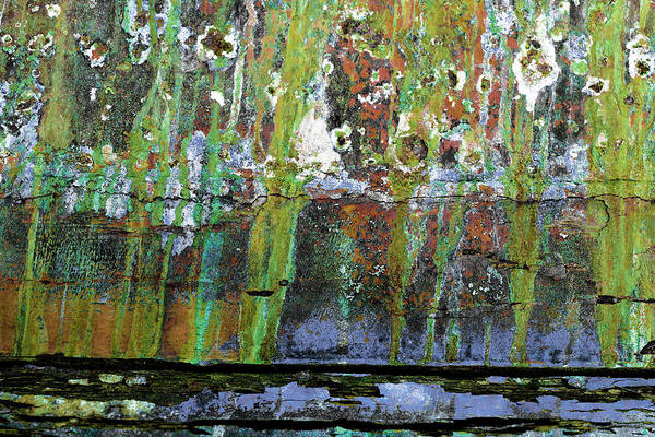 Photograph - Art Print Patina 32 by Harry Gruenert