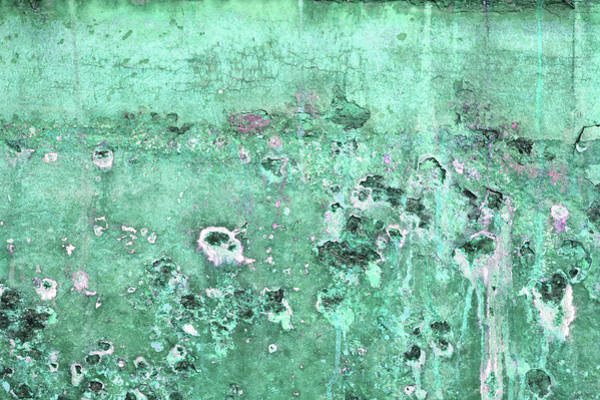 Photograph - Art Print Patina 43 by Harry Gruenert