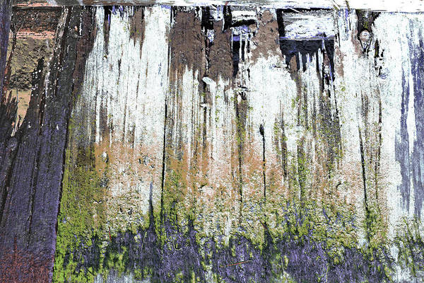 Photograph - Art Print Texture 25 by Harry Gruenert