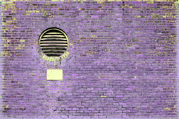 Photograph - Art Print Walls 28 by Harry Gruenert