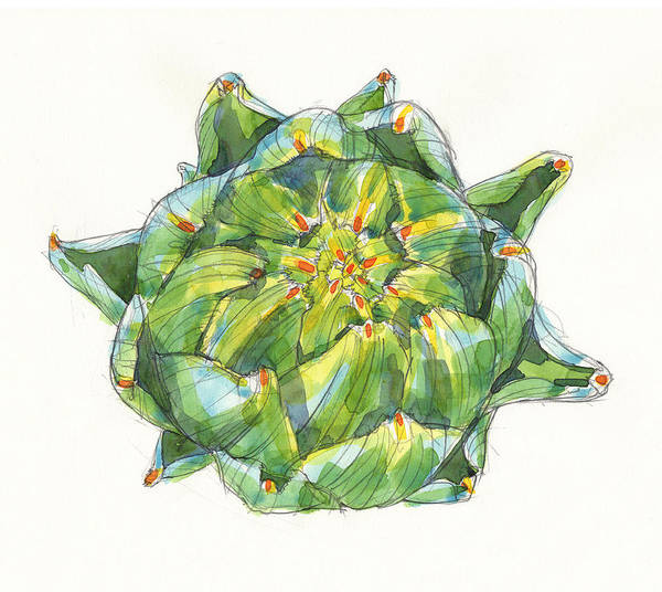 Painting - Artichoke Star by Judith Kunzle