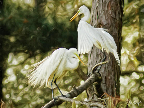 Lowcountry Digital Art - Artistic Egret Couple by Phill Doherty
