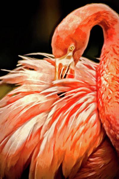Photograph - Artistic Flamingo by Don Johnson