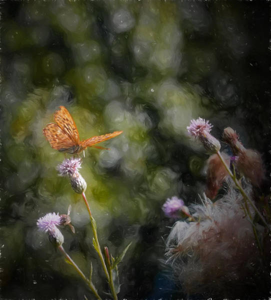 Photograph - Artistic Golden Spotted Butterfl by Leif Sohlman