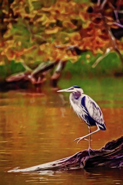 Digital Art - Artistic Great Blue Heron by Don Johnson