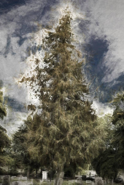 Photograph - Artistic Painterly Tree by Leif Sohlman