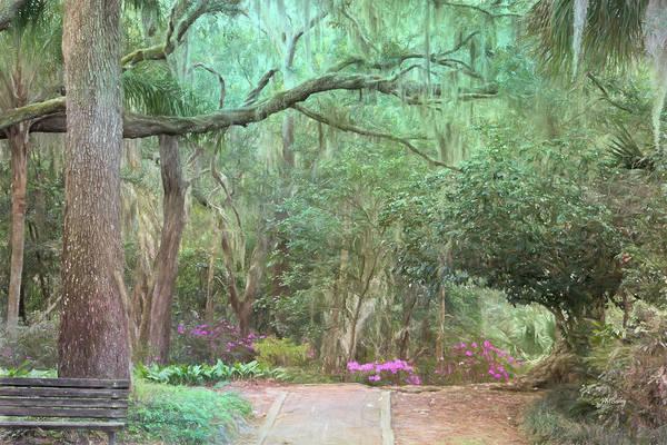 Photograph - Artistry Of Ravine Gardens by John M Bailey