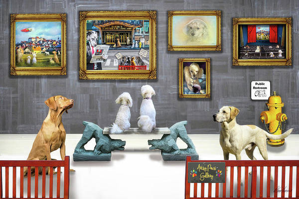 Photograph - Artsy Paws Gallery by Diana Haronis