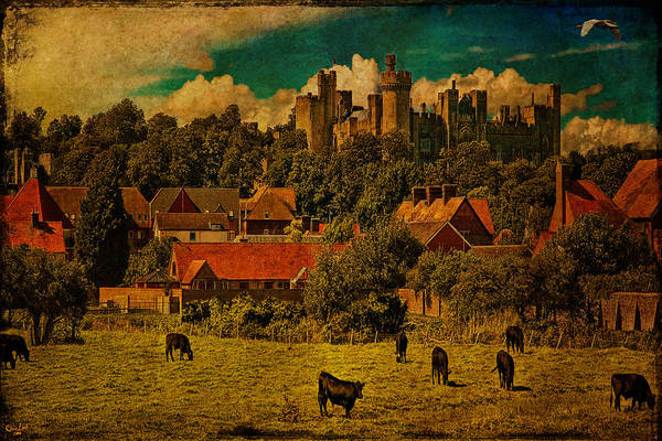 Photograph - Arundel Castle With Cows by Chris Lord