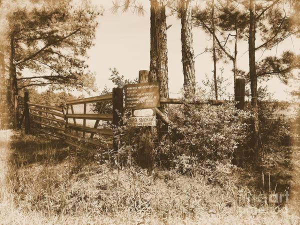 Photograph - Asbestos Lake Albumen by Jay Mann