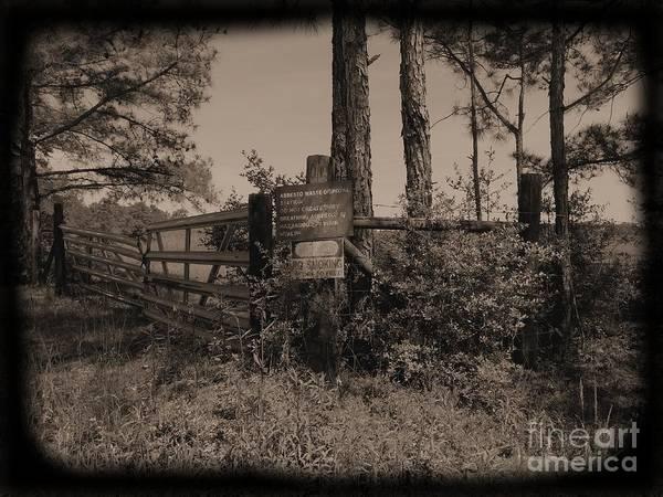 Photograph - Asbestos Lake Daguerreotype by Jay Mann