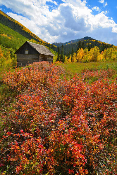 Photograph - Ashcroft Cabin by Ray Mathis