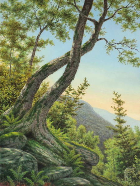 Wall Art - Painting - Asher's Ridge by Barry DeBaun