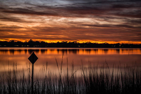 Photograph - Ashley River - Charleston Sc by Donnie Whitaker