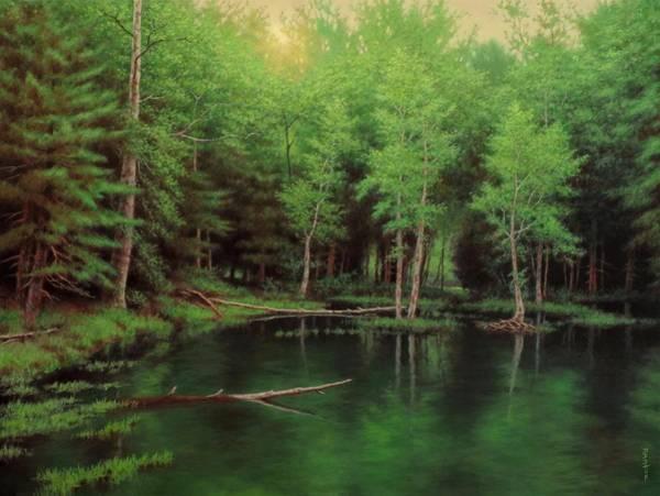 Wall Art - Painting - Ashokan Woods by Barry DeBaun
