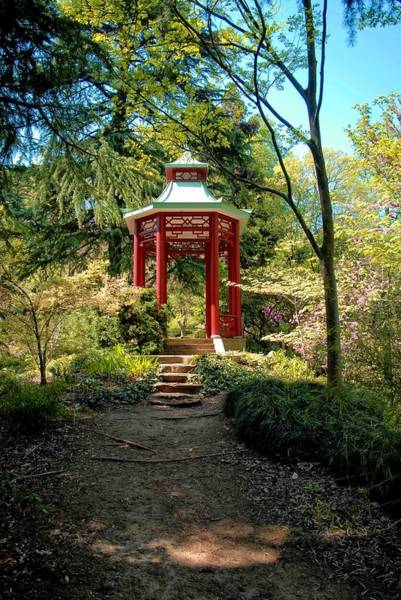 Photograph - Asian Paths No. 30 by Walter Neal