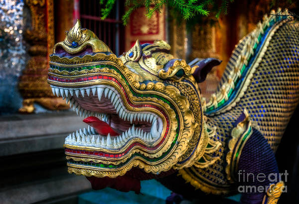 Wall Art - Photograph - Asian Temple Dragon by Adrian Evans
