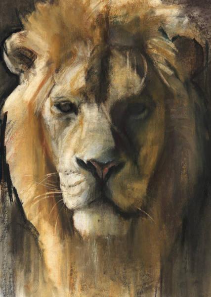 Male Lion Painting - Asiatic Lion by Mark Adlington