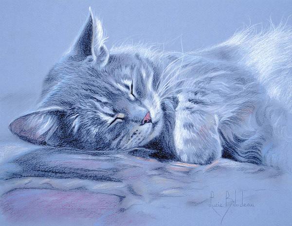 Tabby Drawing - Asleep by Lucie Bilodeau