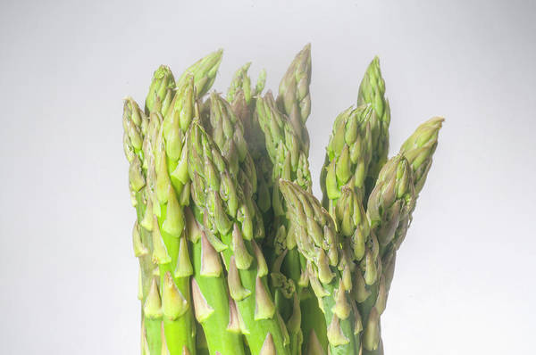 Ingredient Digital Art - Asparagus by Matjaz Preseren