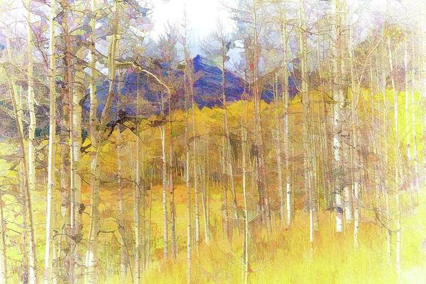 Wall Art - Photograph - Aspen Ambience - Painting by Eric Glaser