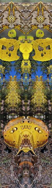 Digital Art - Aspen Bandits by Becky Titus