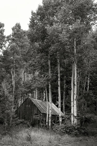 Photograph - Aspen Cabin  by Bud Simpson