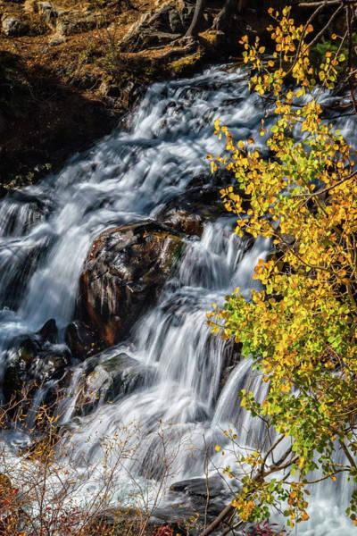 Photograph - Aspen Falls by Lynn Bauer