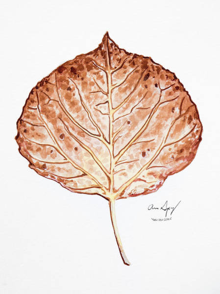 Painting - Aspen Leaf - Brown by Aaron Spong