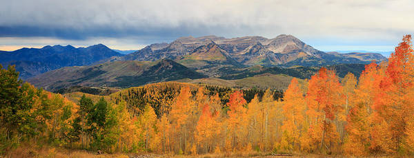 Awe Photograph - Aspen Medley by Johnny Adolphson